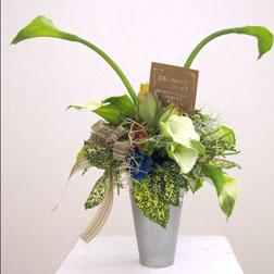 スカイパレスの徳永社長様からのお花です。