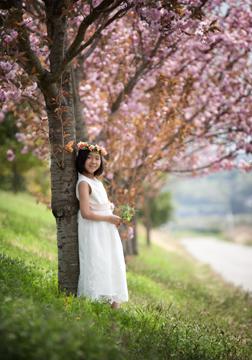 満開の八重桜と。桜が引き立て役になってます(笑)